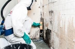 ISOTEC GmbH: Experten: Schimmelpilz ist nichts für Heimwerker / Bewohner schätzen Gefahren von Pilzbefall falsch ein, wie Studie zeigt