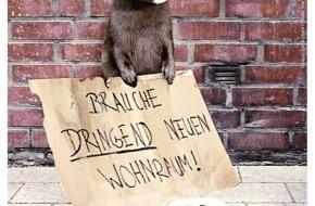 PETA Deutschland e.V.: Jetzt kommen die Tiere zu Wort / Neues Online-Magazin PETA50plus.de präsentiert ungewöhnliche Motive