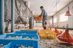 Fondation Terre des hommes: Crise syrienne: les enfants sont de plus en plus contraints à travailler et recrutés pour combattre