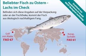 Greenpeace e.V.: Greenpeace: Zu Ostern den richtigen Fisch wählen / Wie erkenne ich beim beliebten Speisefisch Lachs ein ökologisch vertretbares Angebot?