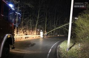 Feuerwehr Iserlohn: FW-MK: Umgestürzter Baum versperrt Straße