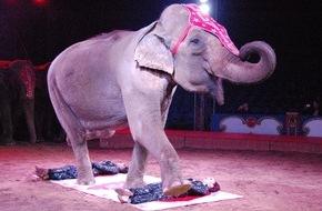 """Aktionsbündnis """"Tiere gehören zum Circus"""": Zirkus-Festival von Monte Carlo: Aktionsbündnis """"Tiere gehören zum Circus"""" fordert ARD auf, das Festival bei der Ausstrahlung nicht zu verfälschen"""