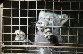 ProTier -  Stiftung für Tierschutz und Ethik: Stopp Pelz! Ein Aufruf von ProTier zum Welttierschutztag am 4. Oktober 2013