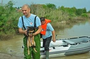 VIER PFOTEN - Stiftung für Tierschutz: VIER PFOTEN auf Einladung der bulgarischen Behörden im Hochwasser-Hilfseinsatz / Kooperation mit Rotem Kreuz und Militär: Rettung von Nutz- und Heimtieren in stark betroffener Stadt Mizia