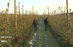 """""""Zur Sache Baden-Württemberg"""", 27.4.2017, u. a. mit Frost bringt Landwirte in Not / Betrüger: Beuteschema Senioren"""", 20.15 Uhr, SWR Fernsehen in Baden-Württemberg"""