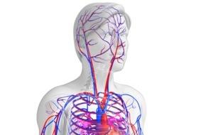 IFEMEDI: Risiko Hypertonie / Neue Studie rät: Schon leichten Bluthochdruck senken!