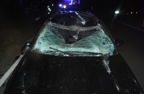 Polizei Düren: POL-DN: Pferd lief vor Auto - schwerer Verkehrsunfall in Hürtgenwald