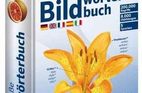 PONS GmbH: Die besten Geschenktipps von PONS - Sprachenlust statt Sockenfrust