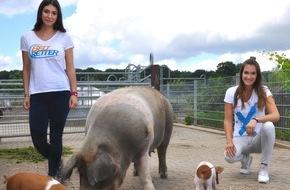 """Beltretter: BELTRETTER fördern """"Dänische Protestschweine"""""""