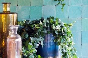 Blumenbüro: Efeu ist Zimmerpflanze des Monats April / Grüner Luftbefeuchter mit Charme: Der Efeu