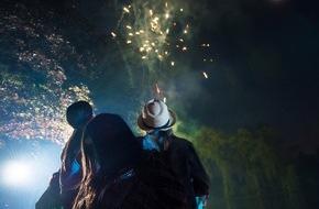 DVAG Deutsche Vermögensberatung AG: Silvesterfeuerwerk: Schön, laut - und gefährlich/ Leichtsinnige Anwendung verursacht schnell Schäden - die DVAG erklärt, welche Versicherung wichtig sind und gibt Tipps für eine sichere Neujahrsfeier