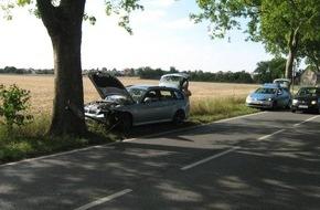Polizeipräsidium Rheinpfalz: POL-PPRP: Inspektion 2 Fahrer verliert Kontrolle über seinen PKW