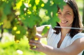 Niederösterreich-Werbung GmbH: 20 Jahre Weinherbst Niederösterreich � ein vinophiler Festreigen voller Genuss und Brauchtum - BILD/VIDEO
