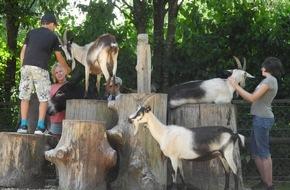 Zürcher Tierschutz: Der Tierschutz von morgen liegt in den Händen der Jugend / Zürcher Tierschutz mit neuem Jugendprogramm