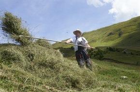 Caritas Schweiz / Caritas Suisse: Caritas-Bergeinsatz vermittelt Freiwillige an Bergbauernfamilien in einer Notsituation / Caritas sucht 700 Freiwillige für einen Einsatz bei Schweizer Bergbauern