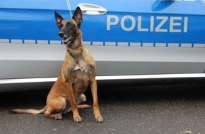 Polizei Hamburg: POL-HH: 160724-3. Vier Festnahmen nach Einbrüchen in Hamburg-Ohlsdorf und Sternschanze