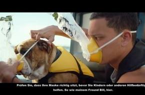 Air New Zealand veröffentlicht neues Sicherheitsvideo: Neuseeländische Stars zeigen die schönsten Orte im Norden Neuseelands