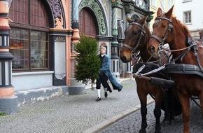 MDR: Ursprung in Weimar: Der Weihnachtsbaum für alle