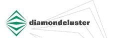 DiamondCluster International, Inc.