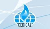 CEDIGAZ