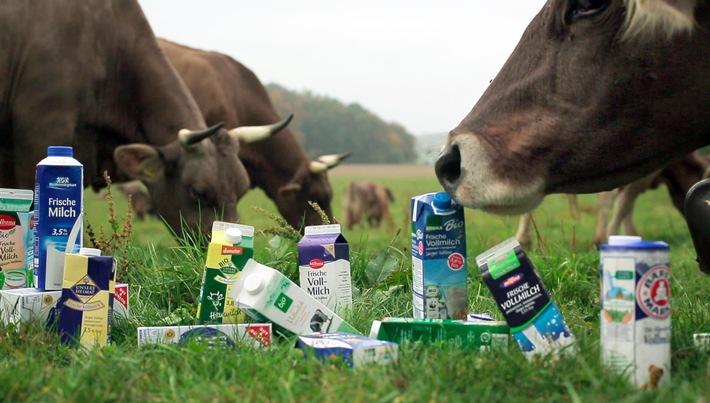 Billige Milch - Wer zahlt für die kleinen Preise? / Film von Christoph Würzburger am Mittwoch, 6. April 2016, 20:15 Uhr im SWR Fernsehen