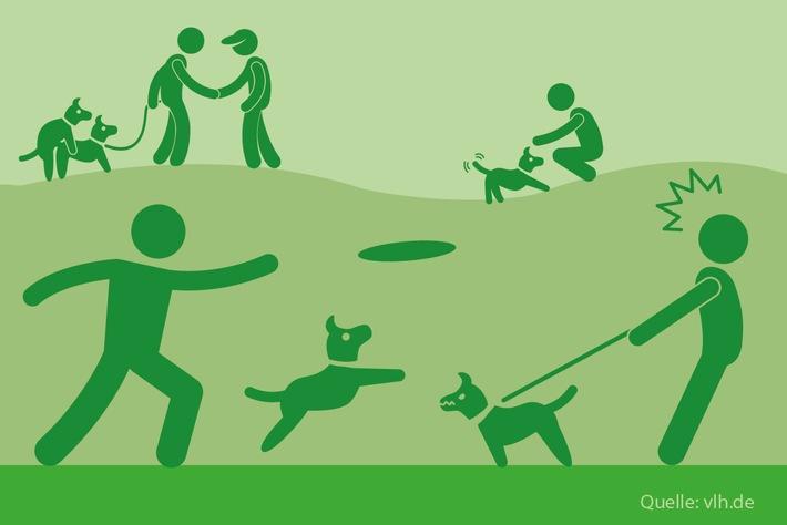 Drei Steuertipps für Hundebesitzer