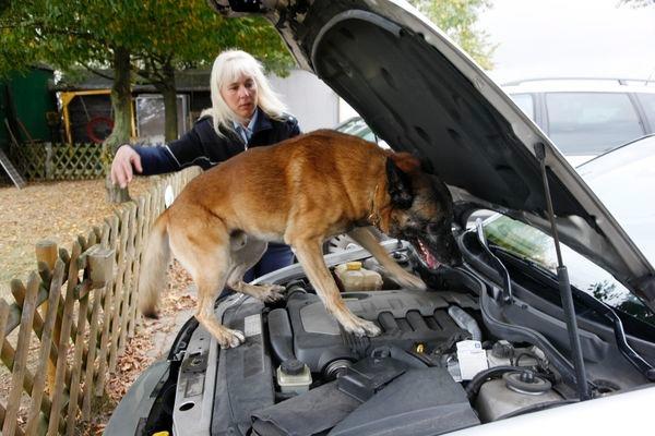 """POL-REK: Erste Schwerpunktkontrolle """"Drogen im Straßenverkehr"""" - Kerpen"""