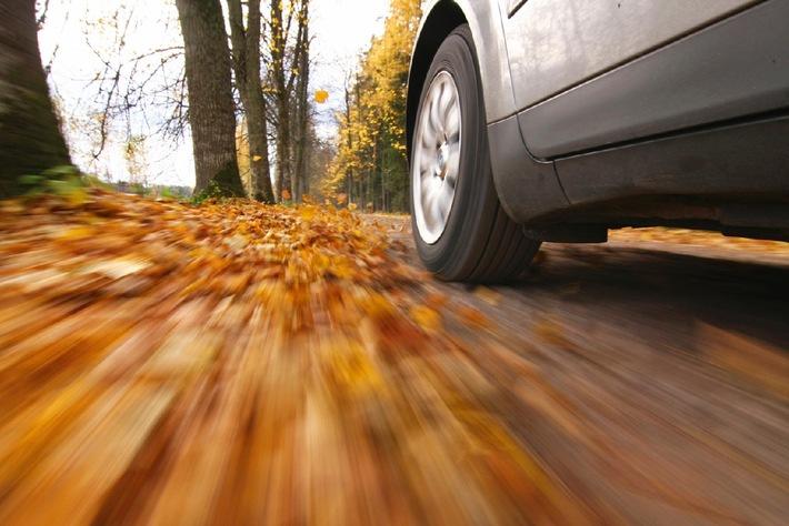 Herbsttauglich: Worauf Autofahrer jetzt achten sollten