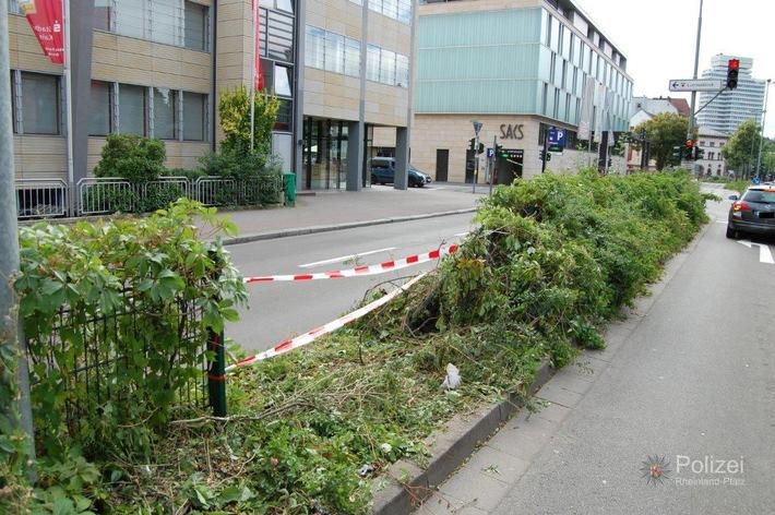 POL-PPWP: Durch Zaun gekracht