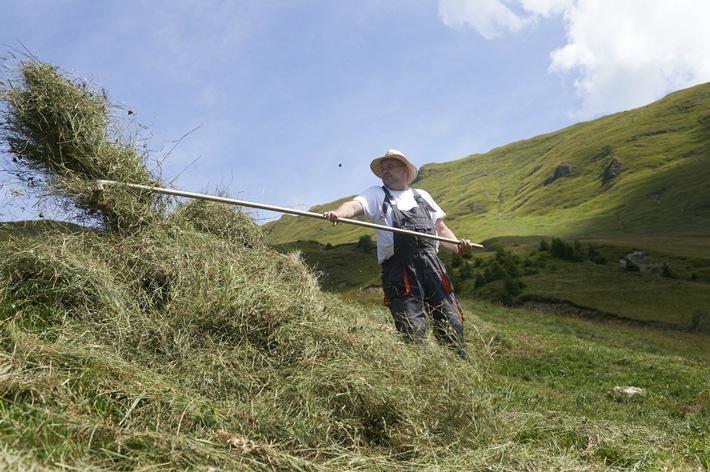 Caritas-Montagnards propose des bénévoles à des familles de paysans de montagne en détresse / Les paysans de montagne suisses ont besoin de 700 bénévoles