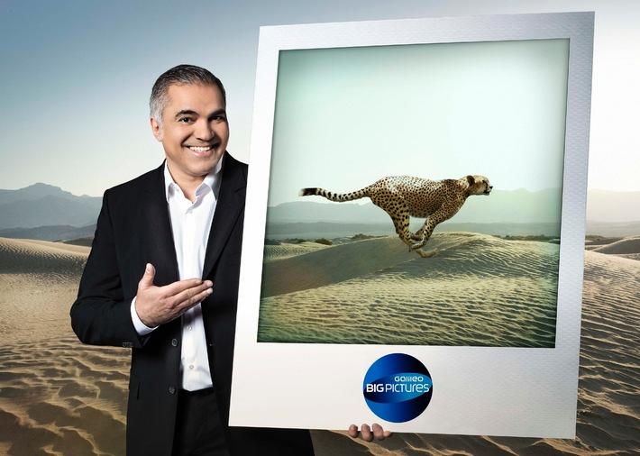 """Eine Ultra-Schwimmerin, 320 Kilogramm Python und Aiman Abdallah: """"Galileo Big Pictures: 50 unglaubliche Bilder"""""""