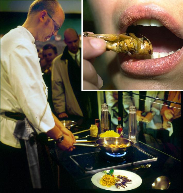 Nahrung zum Nachdenken auf der EXPO 2000