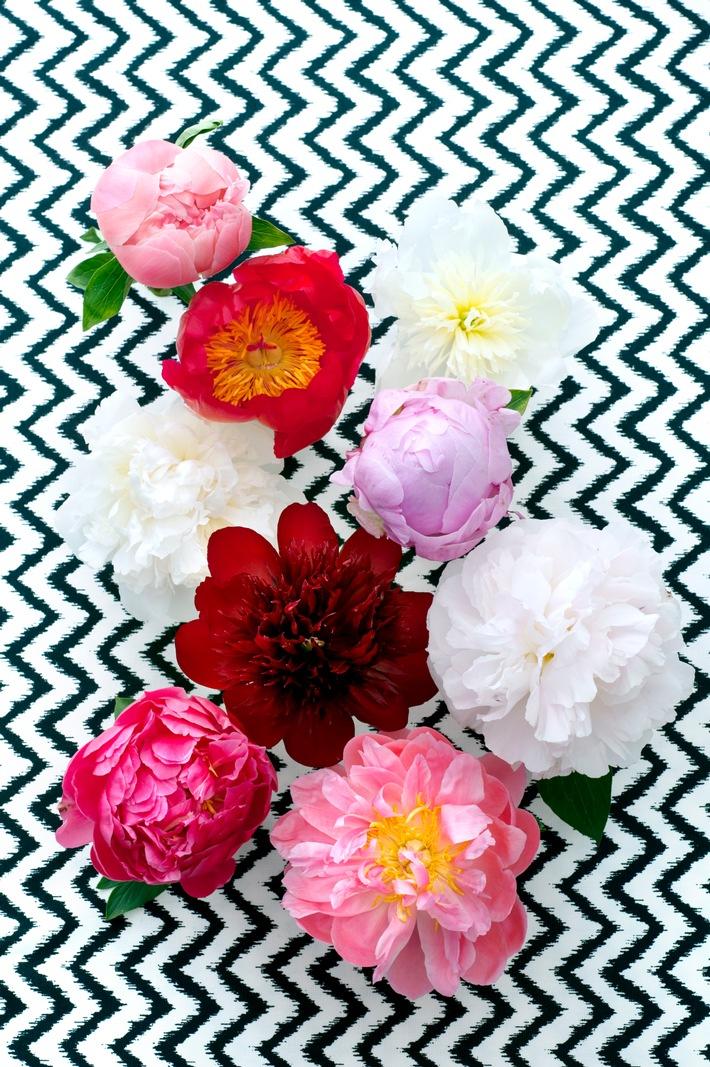 Flower Market am 25. und 26. Juni in Berlin / Floristmeister, Brands, Workshops, Food und vieles mehr