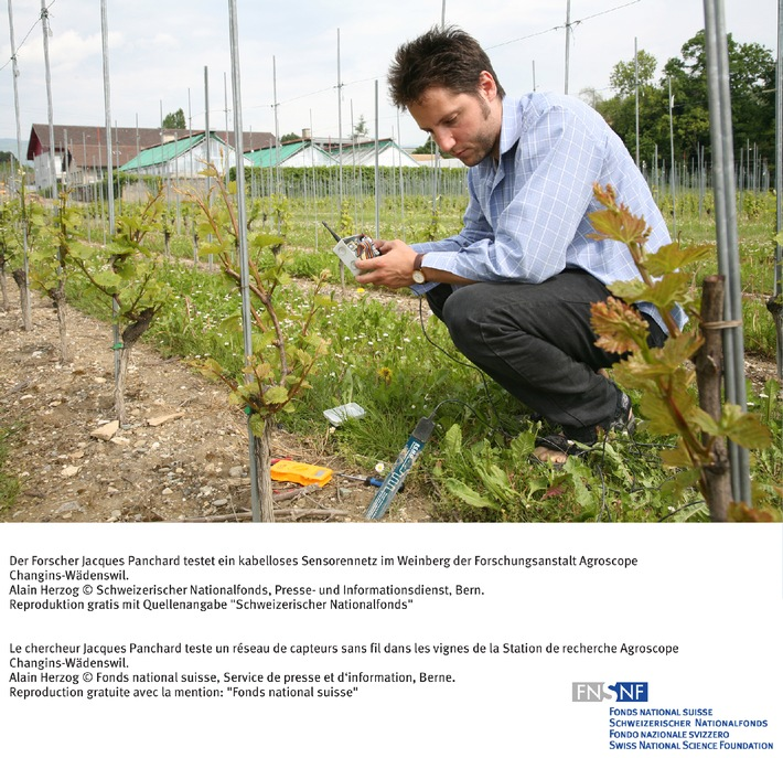 FNS: Image du mois mai 2006: Gestion de l'eau dans l'agriculture