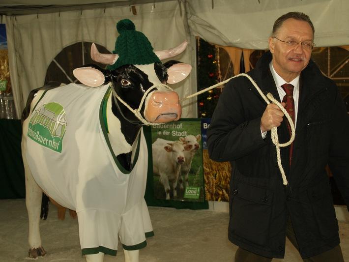 Gerd Sonnleitner holt die Kuh vom Eis (mit Bild)