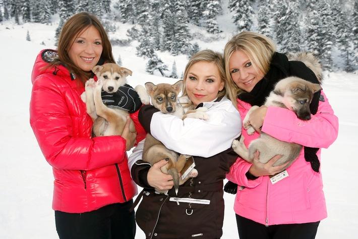 Promis und ihre Huskys - Kühtai startet mit 5. Tirol Cross Mountain am 07.12.2013 in die Wintersaison