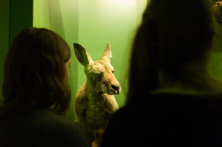 15. Museumsnacht Bern - 17. März 2017