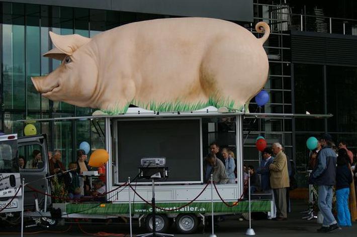 VIER PFOTEN für glückliche Schweine mit dem Grunzmobil auf Tour