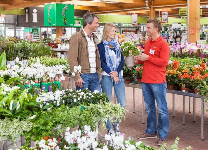 Nachhaltiger Pflanzenschutz ohne Chemie / toom Baumarkt gibt Tipps für alternativen Pflanzenschutz