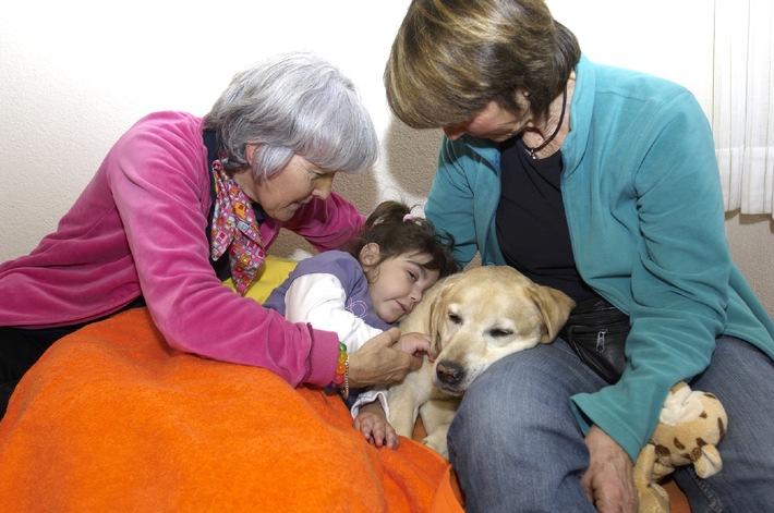 15 Jahre Verein Therapiehunde Schweiz: Zuneigung, Zeit und Wärme dank dem Therapiehund