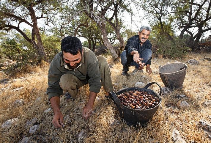 Anniversaire de Weleda: 90 ans en accord avec l'Etre humain et la Nature