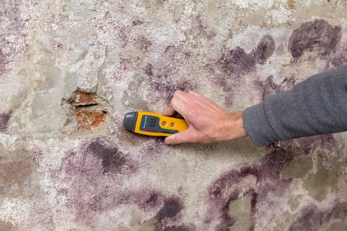 Nass und muffig: Mehr als jeder Zweite in Deutschland kennt Probleme mit feuchten Wänden / Studie belegt: Viele Immobilien haben Feuchteschäden