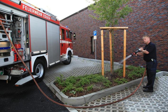 FW-E: Rote Autos, blaue Jungs und grüne Daumen Freiwillige Feuerwehr bewässert Jungbäume im Stadtgebiet