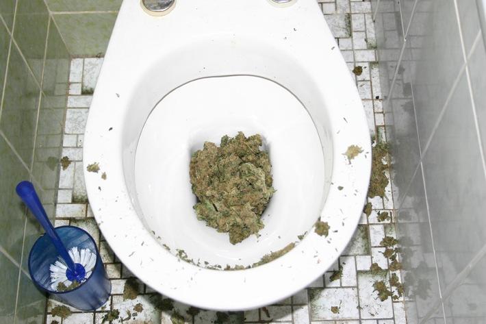 """POL-DA: Bildübermittlung zur Pressemeldung """"Mehr als vier Kilogramm Marihuana sichergestellt/Acht Festnahmen/Marihuana in der Toilette"""""""