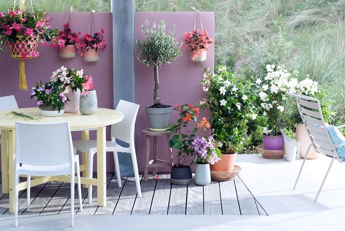Sanfte Frühlingsbrise auf Balkon und Terrasse / Zarte Outdoor-Gestaltung in Pastelltönen