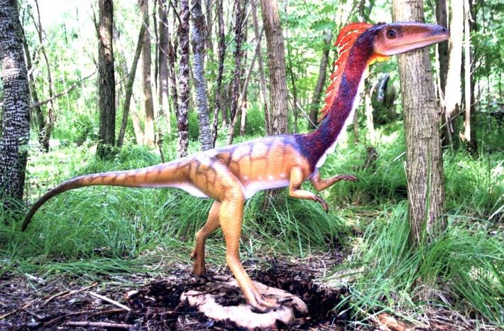 POL-MFR: (1093) Dinosaurier machte sich selbständig - Bildveröffentlichung