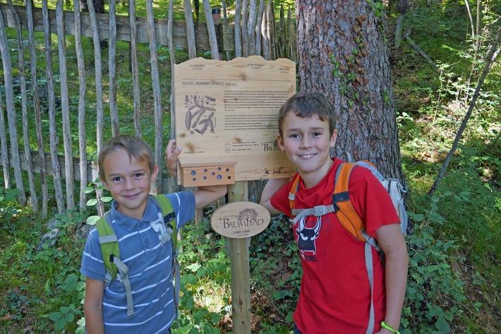 Ein Weg für alle Sinne: Der Gnadenwalder Baumpfad