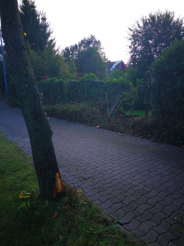Beschädigter Baum und Zaun