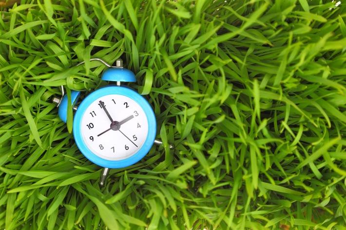 Zeitmanagement - Die 5 besten Tipps zum Fernstudium neben dem Beruf