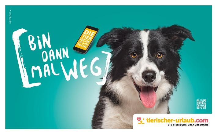www.Tierischer-Urlaub.com - DIE Adresse für Urlaub mit Hund & Co